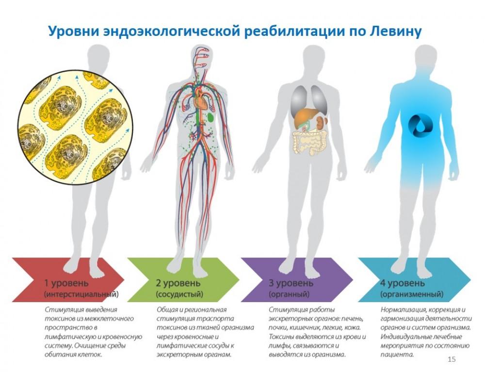 Уровни Эндоэкологической реабилитации